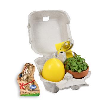 Conjunto de oferta em caixa de ovos com Coelho da Páscoa de chocolate